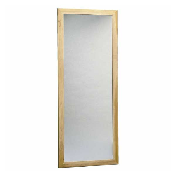 Bailey-Manufacturing/Bailey-Wall-Mounted-Posture-Mirror600.jpg